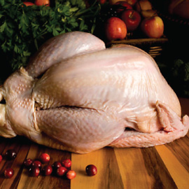 Fresh Turkey - $3.39 / lb