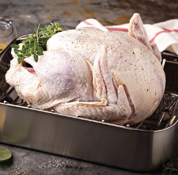 Fresh Turkey